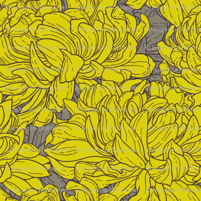 Tricolor seamless pattern with chrysanthemum