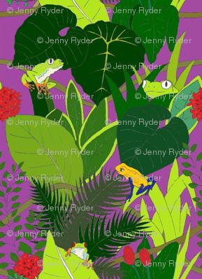 Frog_Tropicana