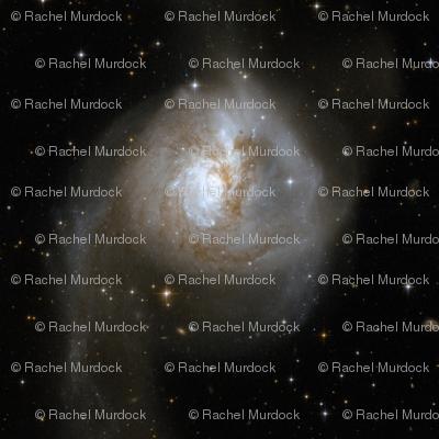 NGC3256