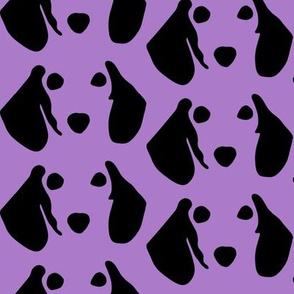 dachshund purple