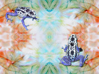 Two Toxic Frogs on tie dye