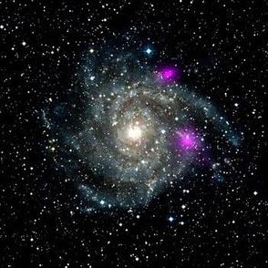 Black Hole Spiral