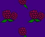 Rrrthe_raspberry_jpeg_ed_thumb