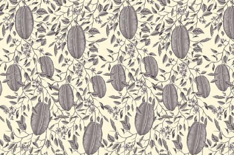ZiggyStartfruitB_W fabric by tinawilson on Spoonflower - custom fabric