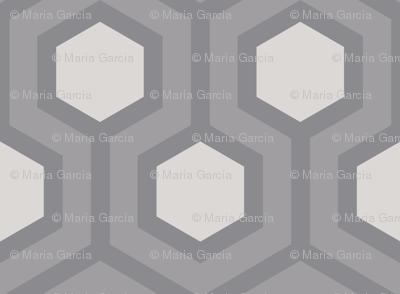 Gray Honeycomb Geo 5