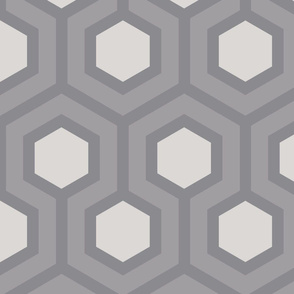 Gray Honeycomb Geo 5