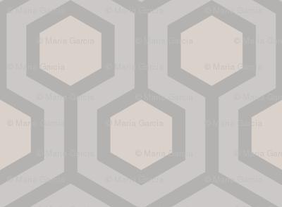 Gray Honeycomb Geo 3