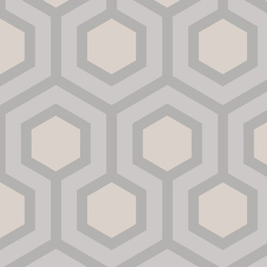 Gray Honeycomb Geo 3