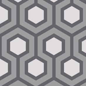 Gray Honeycomb Geo 1