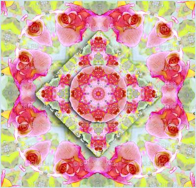 Rose  Kaleidoscope