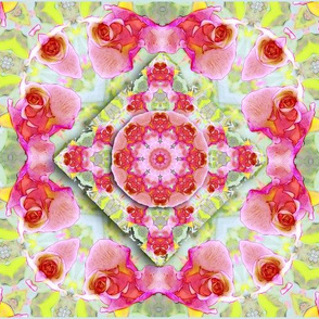 Rose  Kaleidoscope