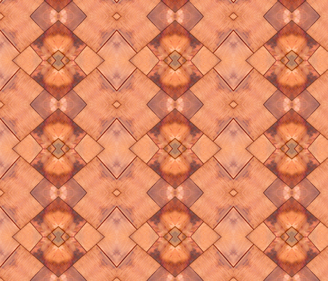 Shakes. in Orange fabric by koalalady on Spoonflower - custom fabric