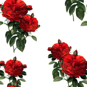 Redoute' Roses ~ Riot of Red Jumble