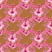 Rrhibuscus_traditional_pink_shop_thumb