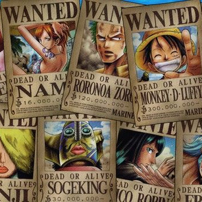 One piece wanted posters colour