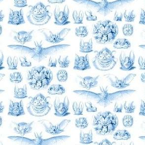 Fledermaus Toile Blue