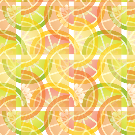 Citrus Slices fabric by melhales on Spoonflower - custom fabric