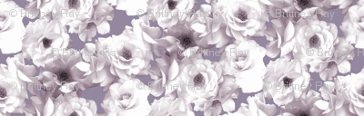 White Roses on Purple