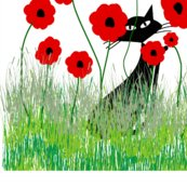 Black_cat_poppies_shop_thumb