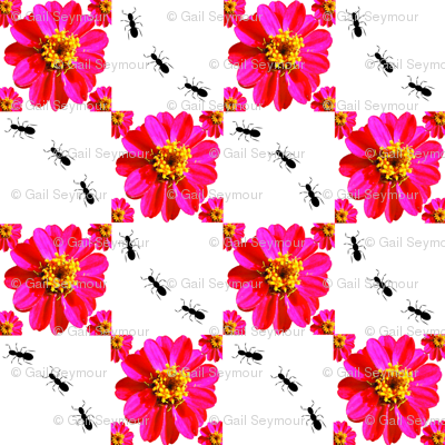 flower_ant_plaid