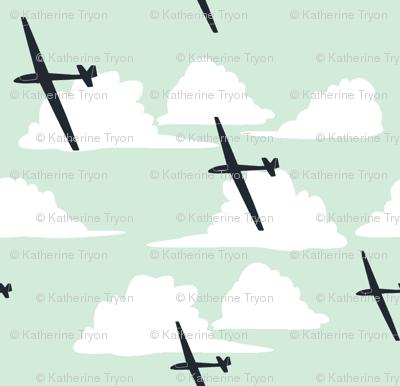 Gliders Under a Cumulus Cloud