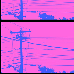 Hold the Line | Blue on Pink