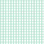 Gingham24mintgreen_shop_thumb