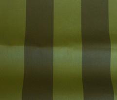 Rflorida_block_stripe_green.ai_comment_312329_preview