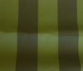 Rflorida_block_stripe_green.ai_comment_312329_thumb