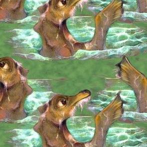 Baby seadragon