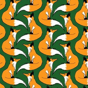 Red Fox on Green