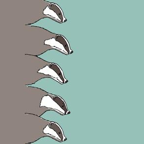 badger single border
