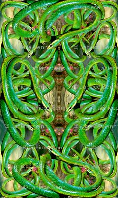 Green Snake Ballet