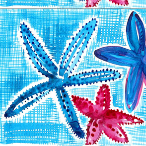 vivart_starfish 3: EDGE TO FIX