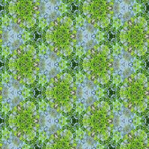 Retro Blue and Green