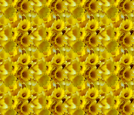 Daffodils 01 fabric by will_la_puerta on Spoonflower - custom fabric