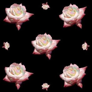 Enameled Roses