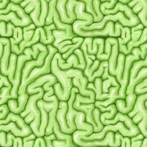 Green Brains