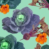 2138125_rcabbages_shop_thumb