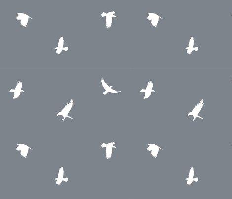 Crows-01_shop_preview