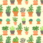 Indoorgarden-01_shop_thumb