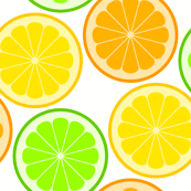 citrus slices S43