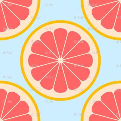 citrus slices R4X : grapefruit