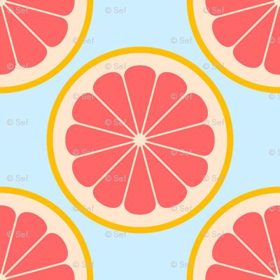 citrus slices R4X : grapefruit