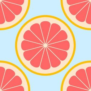 02141174 : citrus slices R4X : grapefruit
