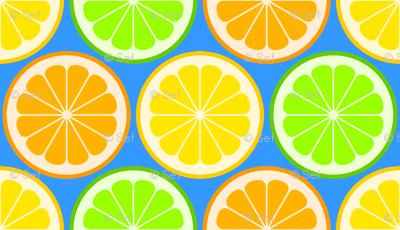 citrus slices R6