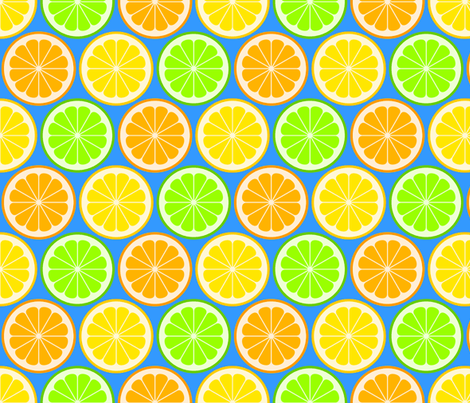 citrus slices R6 fabric by sef on Spoonflower - custom fabric