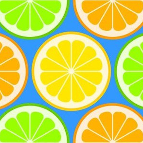 02141175 : citrus slices R6 : fruity