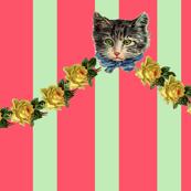 Hello Kitten on Crazy Circus Stripe