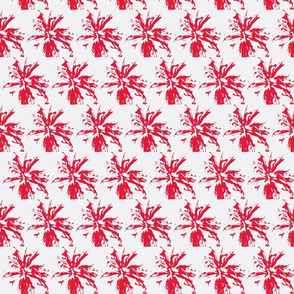 bee_balm_red_on_white